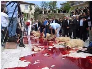 Más de un millón y medio de musulmanes celebraron ayer en España la Fiesta del Sacrificio, en la que deberán sacrificar un cordero en recuerdo del momento en que Dios pidió a Abrahám el sacrificio de su hijo primogénito y, a continuación, lo cambió por un cordero